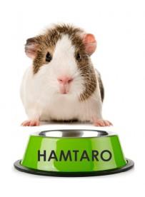 Sticker prénom gamelle hamster