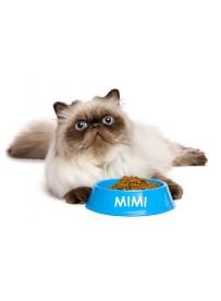 Sticker prénom gamelle chat