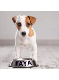 Sticker prénom gamelle chien
