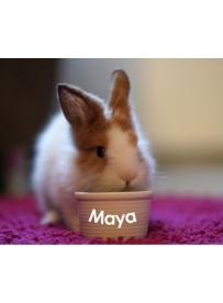 Sticker prénom gamelle lapin