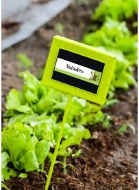 Étiquette Salade graine potager
