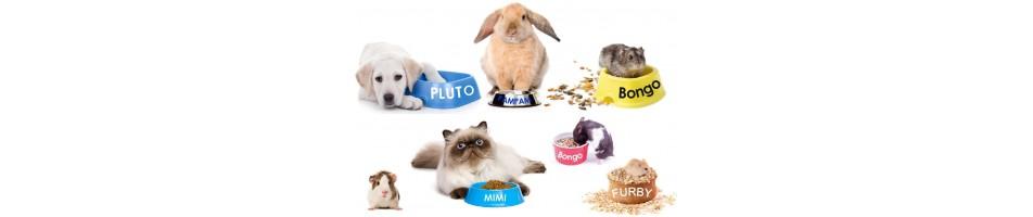 Sticker prénom animal
